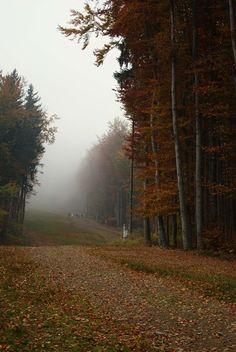 """Pięknie wyglądają góry w czasie jesieni! Ale spieszcie się bo to już ostatni dzwonek na takie widoki! :) Tak samo by kupić nasze kupony na Groupon Polska! Już od 399zł! Wszystkie mają 53% rabatu! ;)  <a href=""""http://travel.groupon.pl/28276960"""" rel=""""nofollow"""" target=""""_blank"""">travel.groupon.pl...</a> (na zdjęciu wejście na Czantorię)"""