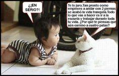 Imagenes+de+Animales+graciosos+con+frases+(8).jpg (720×460)