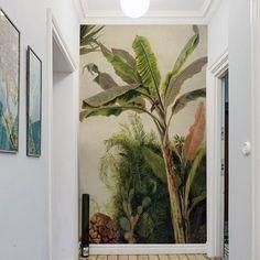 Banana Tree - Papier peint sur-mesure