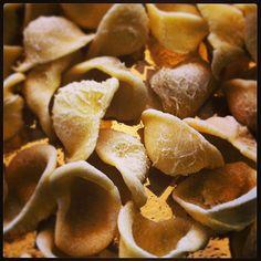Homemade orecchiette #basilicata  #TuscanyAgriturismoGiratola