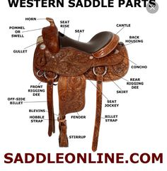 Diagram Of Western Horse Tack Wiring Diagrams For Dummies