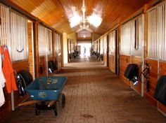Great Stables