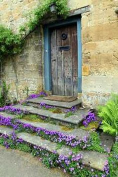 I love primitive looks and just thought this was really pretty! It's also a really creative way 2 make outdoor steps stand out in a positive way...w/beauty!