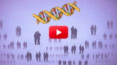 This video explains the real relationship between our genes and our risk of Alzheimer's, and explores what we can do to stay healthy.
