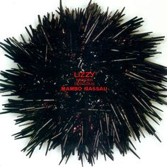 77 Best Ze Records Art Cover Albums Images Albums Music