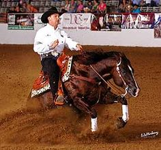 Horse, Custom Legend stallion & rider Andrea Fappani.  This is a reining horse stop sliding