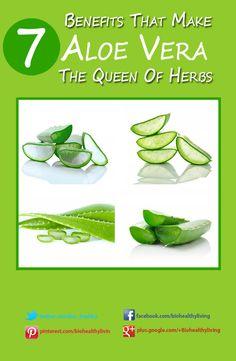 7 Benefits that Make Aloe Vera The Queen Of Herbs