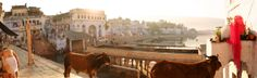 Holy Lake of Pushkar, Rajasthan, India (2014)