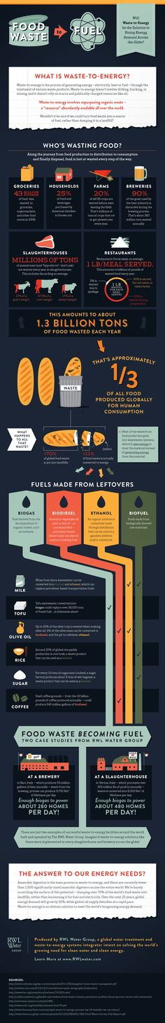 Food Waste to Energy Infographic