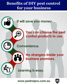#Pests are extremely harmful when they invade your #business premises. They can damage goods worth a lot of money or even cause your business to lose customers. #PestControl