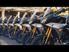 2019 Yamaha Tracer 900GT Press Intro Ride Motorcycle Touring, Offroad, Yamaha, To Go, Bike, Adventure, Cute Cats And Dogs, Dog Cat, Bicycle