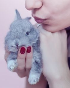 These beauty brands don't test on animals