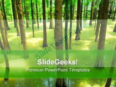 Pond Beauty Nature Powerpoint Template  Powerpoint Templates