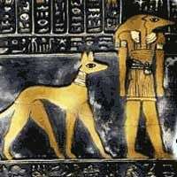 Turkey: Two greyhound 'types' are depicted in temple ...