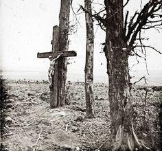 Une croix posée sur un arbre à Fricourt, sur le front de la Somme, octobre 1916.