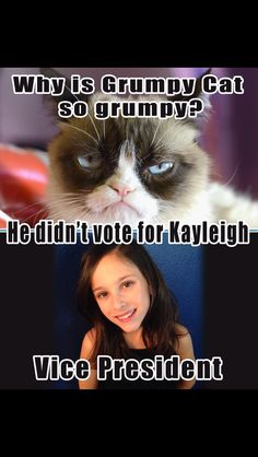 Elementary school student council vice president poster. Grumpy Cat. Vote. Kayleigh