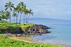 Read Travel Guide: Wailea, Maui for tips on where to stay, eat, and what to see
