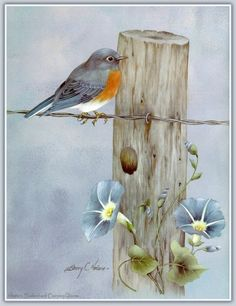 fasci-arte: Sherry C. China Painting, Tole Painting, Bird Pictures, Pictures To Paint, Watercolor Bird, Watercolor Paintings, Pintura Tole, Bird Drawings, Learn To Paint