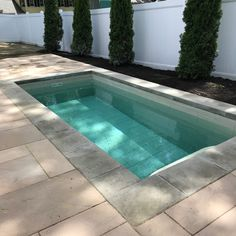 Browse the photo gallery of some of our beautiful plunge pools in a variety of settings and designs. Get inspired and start designing yours today. Natural Swimming Pools, Swimming Pools Backyard, Pool Landscaping, Lap Pools, Natural Pools, Indoor Pools, Pool Spa, Pool Decks, Small Backyard Design