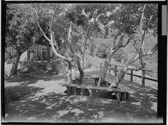 homas Church gardens for Joseph E. Howland: Fahrney, Paul L., residence. Outdoor living space. Kent Woodlands, CA ,   1952