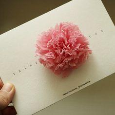 [프리저브드플라워 꽃이핀다] 감사해요 - pink