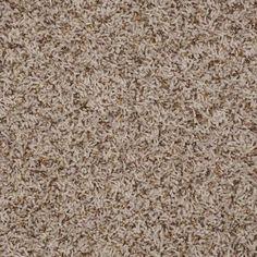Shaw Simple Touch frieze carpet in Capri Best Carpet, Diy Carpet, Wall Carpet, Modern Carpet, Bedroom Carpet, Rugs On Carpet, Inspiral Carpets, Frieze Carpet, Basement Carpet
