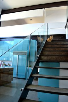 Lake House, steel and glass stair, view into kitchen with lacquered cabinets modern staircase by Merzbau Design Collective