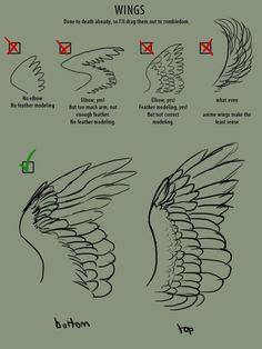 http://referencesforartists.tumblr.com/post/34509711433/birdblog-birdchannel-supaslim-here-have