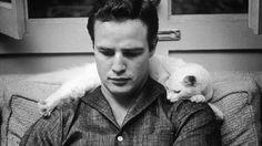 Έλιοτ: Εγχειρίδιο πρακτικής γατικής Μια γάτα, ένα όνομα; Ούτε κατά διάνοια. Το Εγχειρίδιο πρακτικής γατικής του γερο-Πόσουμ του T.S. Eliot το θαυμάσιο ποιητικό ανάγνωσμα που σου αφήνει μόνο χαμόγελα<br />