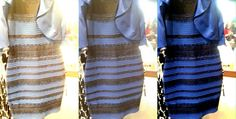 What color is this dress?  Every dog knows it is black and grey!
