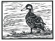 """Little Mallard"" - linocut print - Linda Cote, Canada"