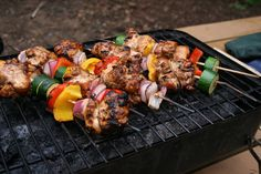 Chicken and vegetable skewers, made ahead of time and frozen.  The Creek Line House: 10 Easy Camp Food Ideas
