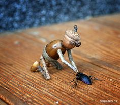 Acorn elf playing with a beetle postcard - animal gift ideas animals and pets diy customize Acorn Crafts, Pine Cone Crafts, Wood Crafts, Fun Crafts, Crafts For Kids, Arts And Crafts, Kids Corner, Nature Crafts, Fairy Land