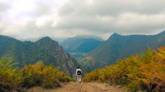 CAMINO DE SAN SALVADOR #PuertodePajares #CastillayLeon #Asturias #PuertoPajares #CaminodeSantiago #CaminoSSalvador #CaminoSanSalvador #CaminoIngles #TheWay #TheCamino #SanSalvadorWay #SanSalvadorRoute #StJamesWay #WayofSaintJames #pilgrim #pilgrimage #peregrino #hiking #trekking #senderismo #deporte #aventura #animales #arte #naturaleza