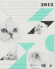 Need Supply Co. / Fieldguided / Dreamcats Calender in N || m || w