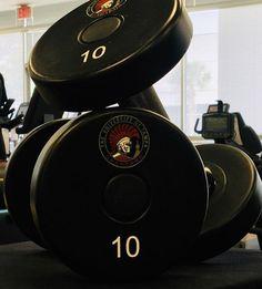 UMAX Polyurethane Dumbbells University of Tampa Spartans Commercial Fitness Equipment, No Equipment Workout, University Of Tampa, Tampa Bay Area