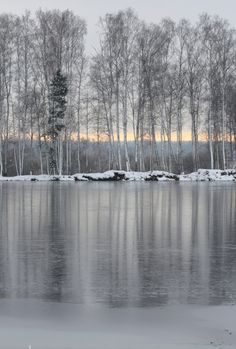 Let us love winter, for it is the spring of genius. ~Pietro Aretino