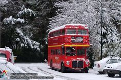 Patagonia, Places Around The World, Around The Worlds, Routemaster, Double Decker Bus, Winter Scenes, Night Photography, Buses, South America
