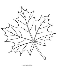 Maple Leaf Coloring Page . Maple Leaf Coloring Page . Sycamore Leaf Template Coloring Page No 1 Fall Leaves Coloring Pages, Leaf Coloring Page, Flower Coloring Pages, Coloring Pages For Kids, Leaves Template Free Printable, Maple Leaf Template, Free Printable Coloring Pages, Autumn Leaf Color, Autumn Leaves