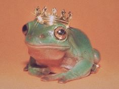 Cute Little Animals, Cute Funny Animals, Aesthetic Art, Aesthetic Pictures, Sapo Meme, Frog Pictures, Frog Art, Cute Frogs, Frog And Toad