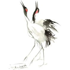 Japaneese Crane, two cranes, original watercolor minimalist painting,... (8.105 HUF) ❤ liked on Polyvore featuring home, home decor, wall art, animals, photo wall art, animal paintings, black and white paintings, black white wall art and red black and white paintings