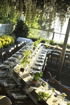 herbs like basilico, salvia & more were added to table as decor as well as use for their rustic dinner which they cut off with mini scissors on the tables - sugokuii events