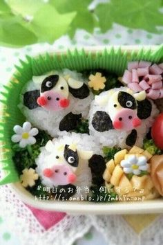 Cute cows in a field onigiri bento box
