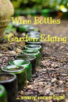 1 of many awesome ideas!!! Wine bottles used as garden edging - clever! Pin for later use!