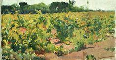 Estudio de viñas, Jerez. 1914