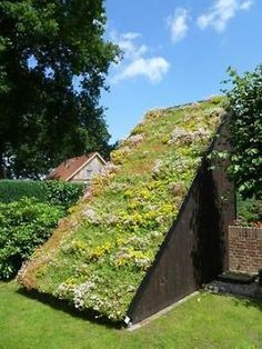 A natural roof is typically a roof top that is actually talked about herbs, which reduces stormwater run-off and decreases cool costs. Sedum Roof, Living Roofs, Eco Architecture, Terrace Garden, Parcs, Garden Structures, Diy Pergola, Back Gardens, Green Building
