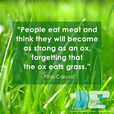 Food for thought ;)  #plantbased #vegan #vegetarian #quotes