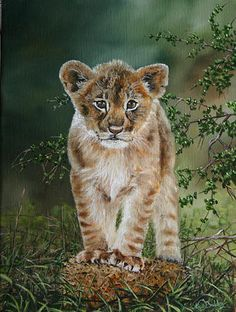 Nico Bulder - leeuwtje