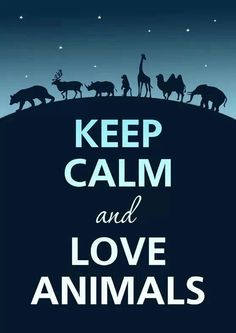 KEEP CALM and LOVE ANIMALS #Animal #Love