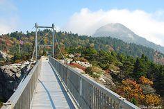 Fall Color Near Swinging Bridge